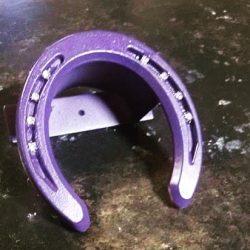 purple-1-jpg